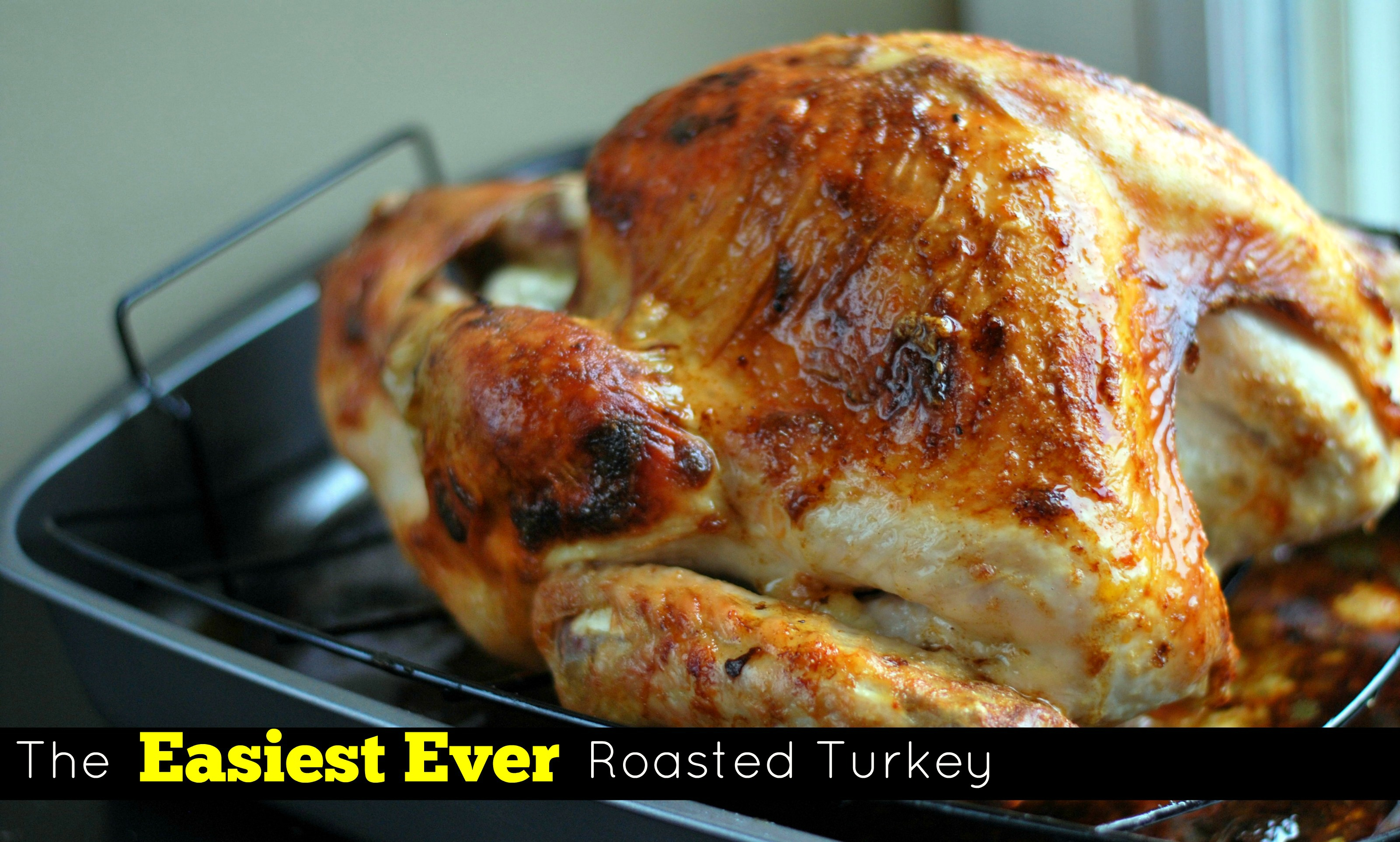 The Easiest Ever Roasted Turkey