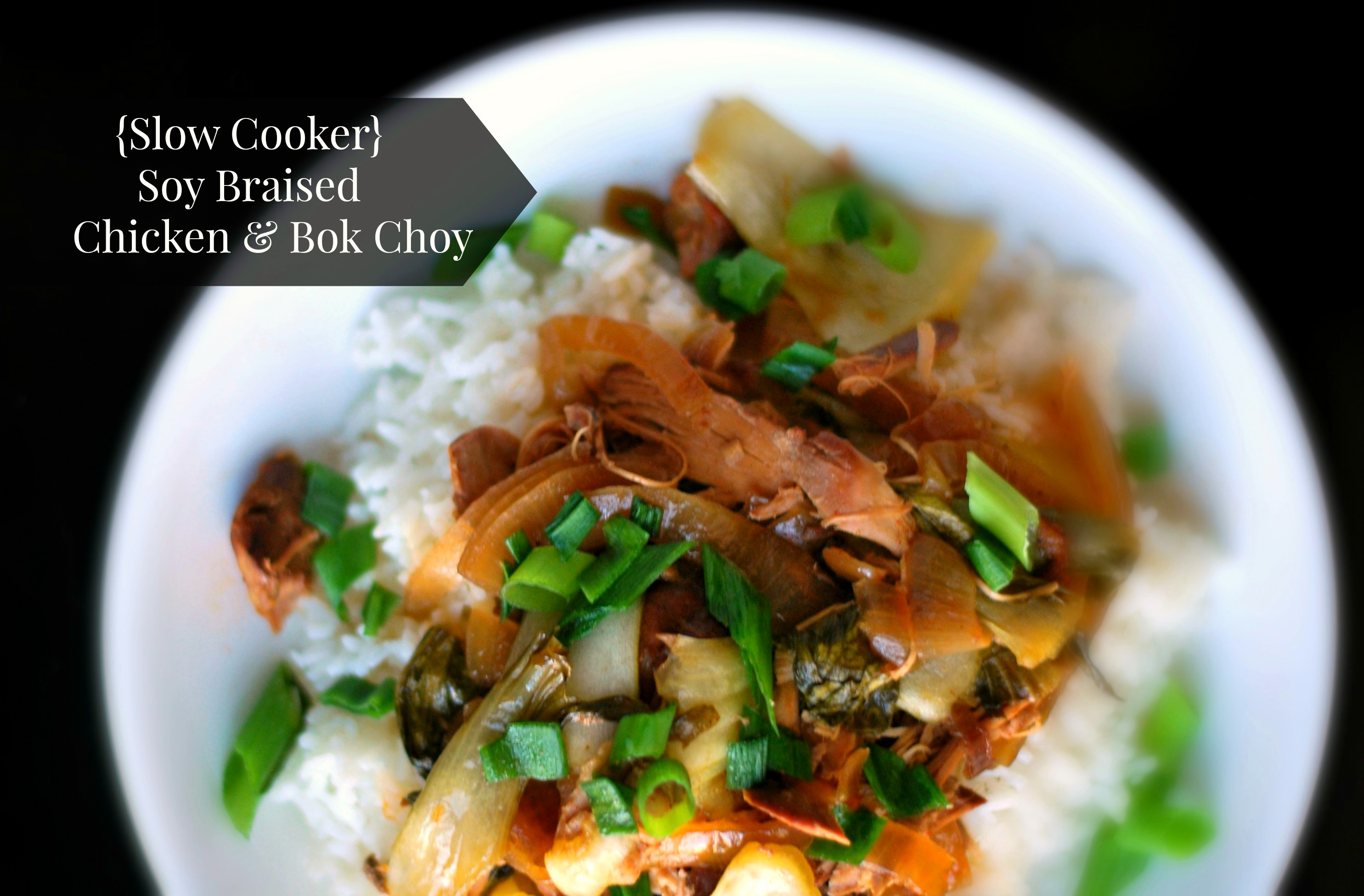 Slow Cooker Soy Braised Chicken & Bok Choy